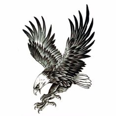 Cheap eagle tattoo, Buy Quality tattoo for men directly from China fake tattoo Suppliers: Cool Eagle Tattoo For Men Waterproof Temporary Tattoos Water Transfer Stickers On The Body Fake Tatoo Sleeves Fake Tattoos Trendy Tattoos, Popular Tattoos, Black Tattoos, Body Art Tattoos, New Tattoos, Tattoos For Guys, Cool Tattoos, Tattoo Drawings, Wing Tattoos