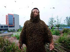 Homem cobre o corpo com abelhas numa tentativa de quebrar um recorde mundial (Reuters)