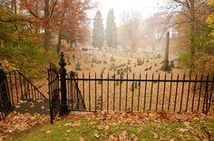 taphophilia:   Mount Hope Cemetery by Larissa Coe