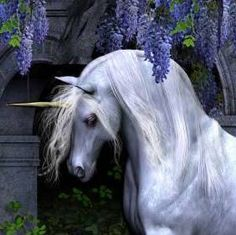 Unicorn Fan Club https://www.facebook.com/pages/Unicorn-Fan-Club/353488018086892