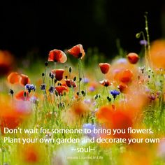 Dont wait for someone to bring you flowers. Plant your own garden and decorate your own soul...