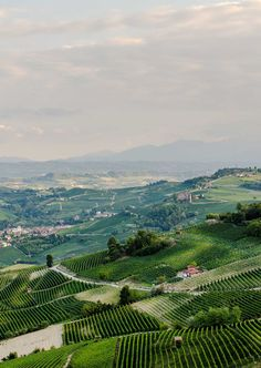 #Piedmont #webphotography #AQuest #DigitalAgency