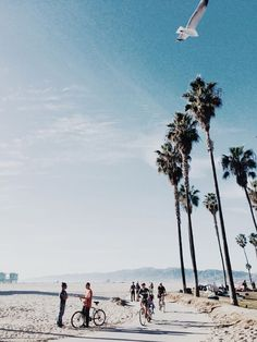 Santa Monica to Venice Beach.