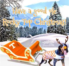 Rocky Top Christmas Tennessee Volunteers Football, Tennessee Football, University Of Tennessee, Tennessee Girls, East Tennessee, Tn Vols, Kobe Bryant Pictures, Orange Country, Christmas Paintings On Canvas