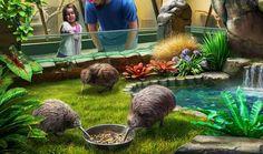 Gardens of Time | Kiwi Habitat
