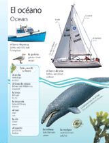 Ocean (El océano) themed vocabulary | Introduce students to the Spanish words for aquatic life and sea vessels with these vocabulary handouts. Get the printables from TeacherVision: https://www.teachervision.com/spanish-language/printable/70422.html