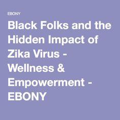 Black Folks and the Hidden Impact of Zika Virus - Wellness & Empowerment - EBONY
