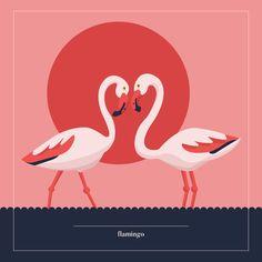 Flamingo ©Justyna Krug Digital Illustration, Flamingo, Animation, Illustrations, Animals, Animales, Animaux, Flamingos, Animation Movies