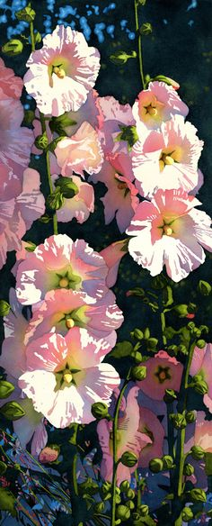 Hollyhocks  Watercolor by the incredibly talented Chris Beck. She gives classes and I want to find one I can attend!