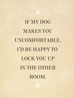 It's National Pet Day, so what better way to celebrate how much you love your dog and adore your cat than to share these funny pet memes and relatable quotes about pets. Mans Best Friend, Best Friends, Dog Best Friend Quotes, Funny Friends, Dog Friends, Jiff Pom, Diy Pet, Pet Sitter, Dogs Of The World
