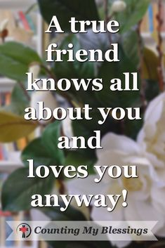 Friends are precious gifts that make life better. We& celebrating friendship with. 25 Inspiring Quotes that will Bless Your Friendships. New Quotes, Happy Quotes, Quotes To Live By, Love Quotes, Funny Quotes, Inspirational Quotes, Friend Quotes, Famous Friendship Quotes, Celebrating Friendship