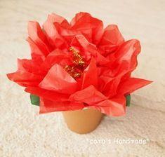 ポインセチアの鉢植え かんたん工作でクリスマス気分の作り方