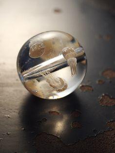 タコクラゲのトンボ玉