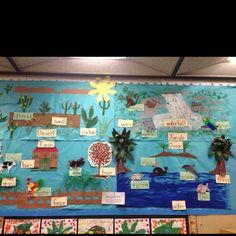 Animal habitat bulletin board