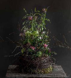 Workshop med blommor och foto - Blomsterverkstad