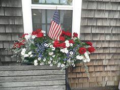 patriotic window box on Nantucket/great color combination Window Box Flowers, Window Boxes, Flower Boxes, Flower Containers, Flower Baskets, Succulent Containers, Succulents, Fourth Of July, 4th Of July Wreath