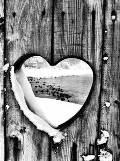 Looking through a heart cut out in a fence,