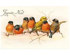 christmas birds postcard scan digital image french script fabric transfer cardmaking tag jpg diy printable download large vintage image