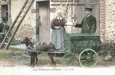 Postal cart drawn by dogs with ad of french coffee company Au Planteur de Caiffa