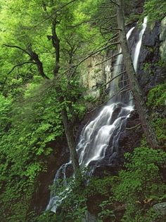 size: Photographic Print: Lewis Falls, Shenandoah National Park Poster by Charles Gurche : Travel Shenandoah National Park, Shenandoah Valley, National Park Posters, Us National Parks, East Coast Road Trip, Virginia Usa, Virginia Is For Lovers, Vacation Spots, Day Trips