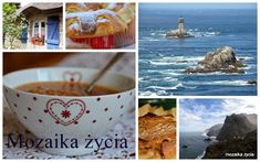 Mozaika życia: Kibinai z uproszczonym farszem Chutney, Tableware, Food, Cooking, Dinnerware, Tablewares, Essen, Meals, Chutneys