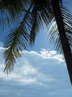 #Balneário #Camboriú  #por do sol #mar #praia