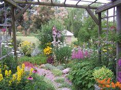 Garden photos and videos - Garden Inspirations on YourGardenShow.com