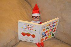 Elf On the Shelf Ideas, Easy Elf On The Shelf Ideas. reading a book