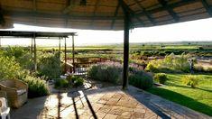 South Africa, Pergola, Houses, Outdoor Structures, Patio, Outdoor Decor, Home Decor, Homes, Decoration Home
