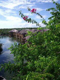 Paladium, Riviera Maya