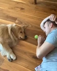 Too hot to play fetch outside, so how about a game of lazy fetch inside - Ka - Animals Cute Funny Animals, Cute Baby Animals, Funny Dogs, Animals And Pets, Lazy Animals, Wild Animals, Animal Babies, Fun Funny, Funny Games