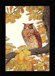 Yoshida Toshi - Mimizuku (Eagle Owl) - Japanese Woodblock Print