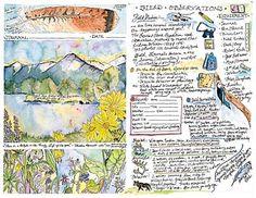 nature journal inspiration