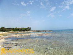 Spiaggia di Torre Guaceto, riserva naturale statale e area marina protetta.