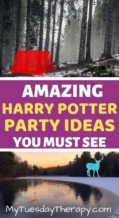 Harry Potter Party Ideas That Are Totally Genius! You'll love these for Harry Potter teen birthday party. Harry Potter Party Games, Harry Potter Party Decorations, Harry Potter Birthday, Harry Potter Diy, Birthday Party For Teens, Birthday Party Games, Teen Birthday, Birthday Ideas, 16th Birthday