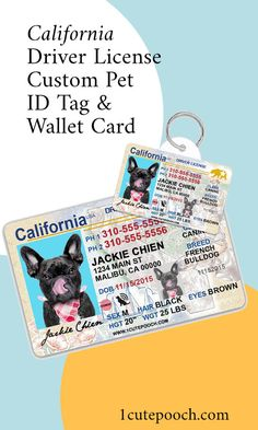 100   CUTE TAGS PUPPY Tags Cute Dog In Blue  with  Plastic Loop Pins at Etsy
