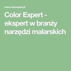 Color Expert - ekspert w branży narzędzi malarskich