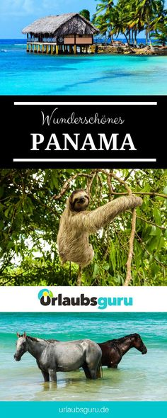 Panama Tips: That's why you should take a trip to Panama. Learn more about the beauty of Panama in my travel m Les Balkans, Where Is Bora Bora, Lanai Island, Westerns, Visit Savannah, Les Continents, Alaska Travel, Cabo San Lucas, Puerto Vallarta