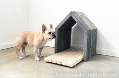 Dog-I-Y: How to Make a Modern Concrete Dog House