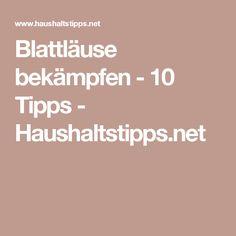 Blattläuse bekämpfen - 10 Tipps - Haushaltstipps.net