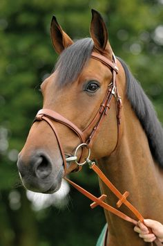 Stubben-Passion bridle - Because you love your horse - high-quality bridle in a novel design with silver coloured fittings. Excellent comfort and well-being for your horse are ensured by the wide and softly underpadded noseband and head piece. The shape of the headstall and the noseband is based on the latest veterinary findings and results in a substantial reduction of pressure.