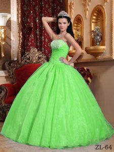 ef92a4fbdbe Attractive Organza Spring Green Quinceanera Dress with Appliques on Sale  Cheap Quinceanera Dresses