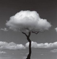 Fotografia criativa e apenas em preto e branco para formar uma ilusão de ótica de Chema Madoz - blog de design bonstutoriais (11)