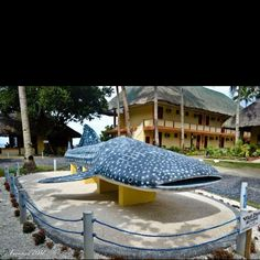 A lifesize replica of a Whale Shark in Donsol Province