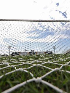 BotafogoDePrimeira: De Tite a jogadores: alvo de críticas, gramado da ...