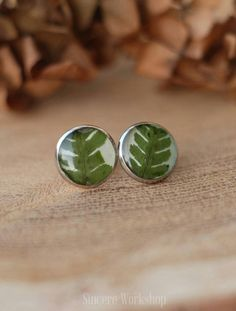 Stud earrings green fern real leaves dried flower green earrings resin earrings jewelry herbarium botanical jewelry flower laconic forest by sincereworkshop on Etsy