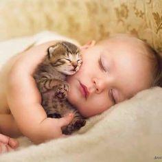 Beau bébé blond avec chaton tigré, tous deux endormis - mignons comme tout!...