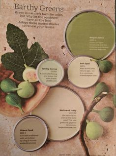 paint colors Paint Color Palette - Earthy Greens Muted natural shades of green paint colors to refresh your rooms! via bhg Colors Used: Grape Leaves by … Read Green Paint Colors, Interior Paint Colors, Paint Colors For Home, House Colors, Interior Painting, Paint Color Palettes, Paint Color Schemes, Garden Painting, House Painting