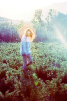 Sunshine. Solar glare, open field, countryside walk, road trip