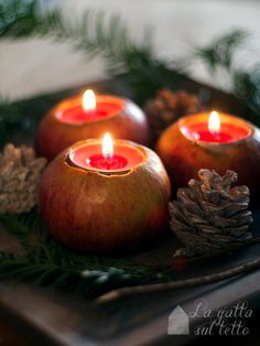 apple candle holders...